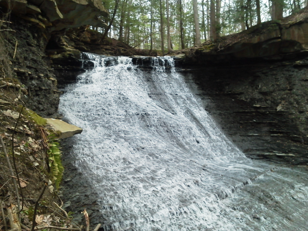 Rocky Run Waterfall